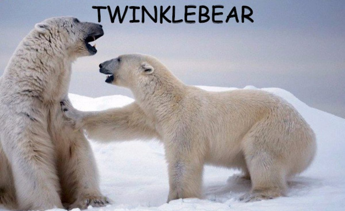 TWINKLEBEAR'S BEARLY THOUGHTS